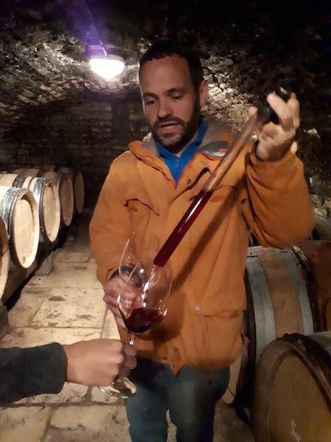 Vins natures de Bourgogne: Domaine Renaud Boyer