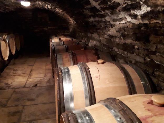 Vin-naturel-Bourgogne-1.jpg