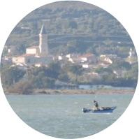 Muscat de Mireval