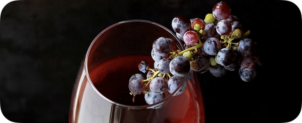 Vibration et énergie du vin
